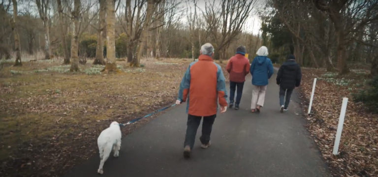 A group of people walking
