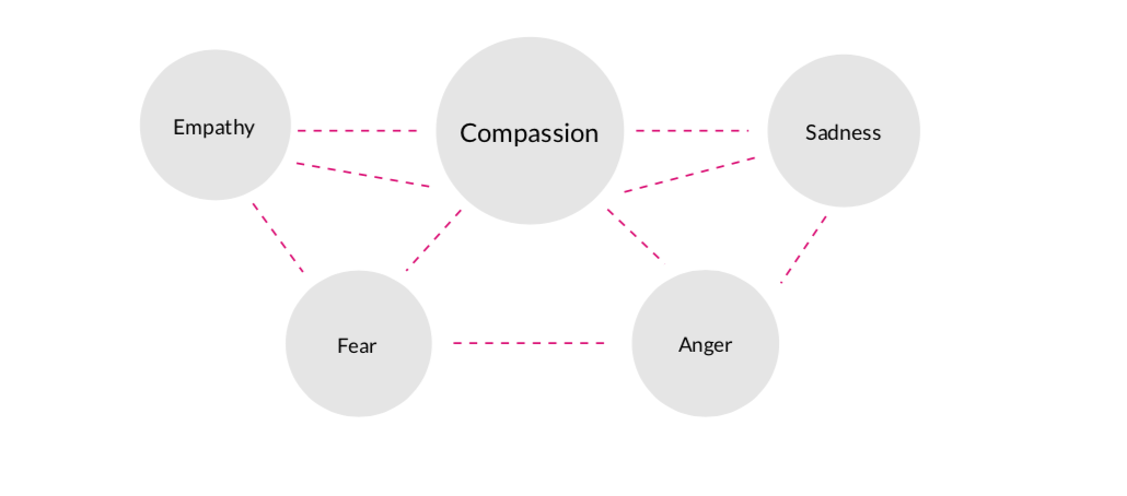empathy, compassion,sadness,fear,anger