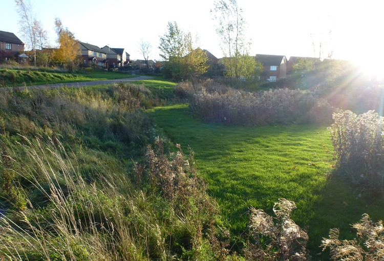 Collaborative management of green spaces